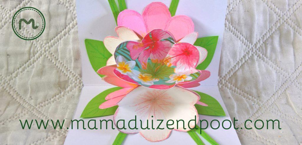 Een pop-up kaart met bloemen
