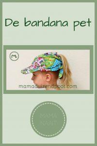 Pinterest - bandana pet
