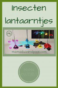 Pinterest - insecten lantaarntjes