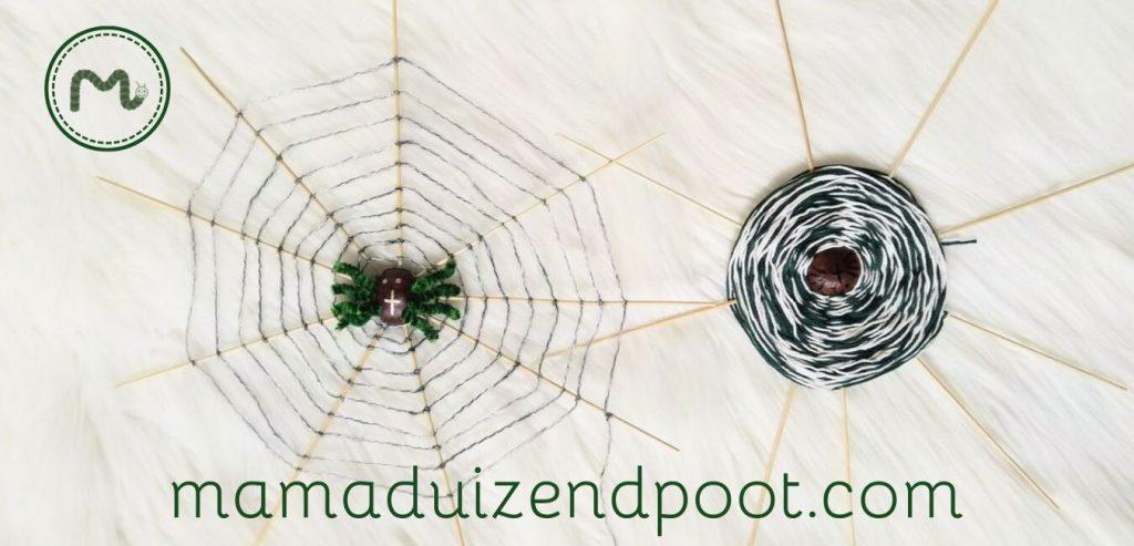 Een kastanje spinnenweb op 2 manieren