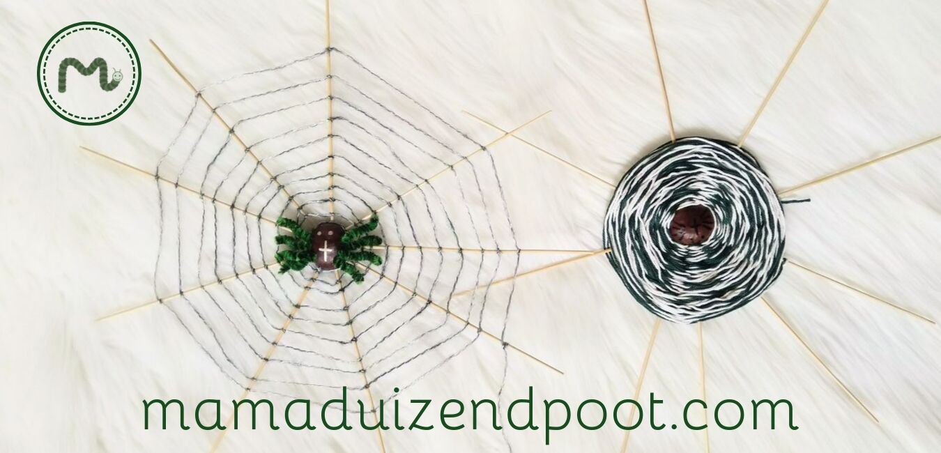 Kastanje spinnenweb