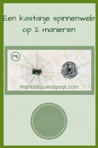 Pinterest - kastanje spinnenweb
