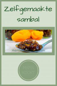 Pinterest - zelfgemaakte sambal
