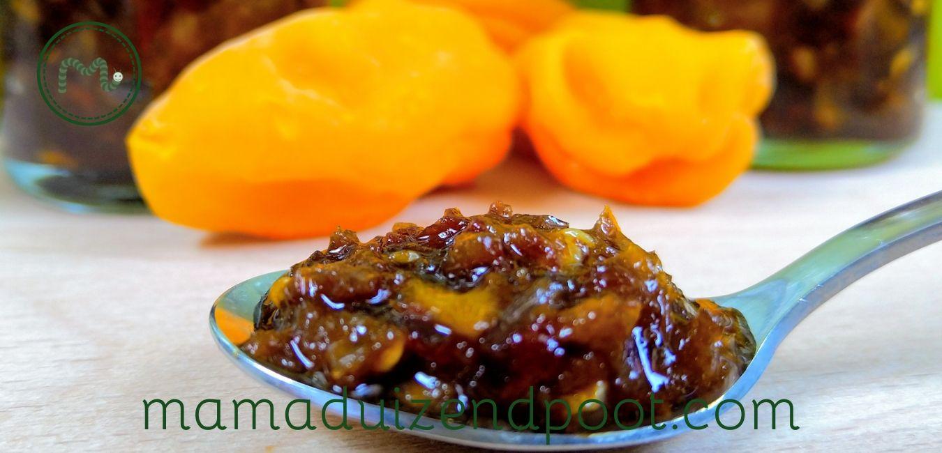 Zelfgemaakte sambal