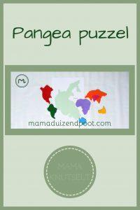 Pinterest - Pangea puzzel