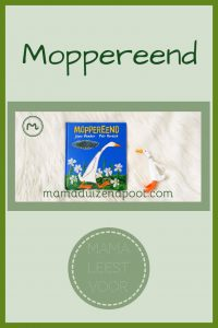Pinterest - moppereend