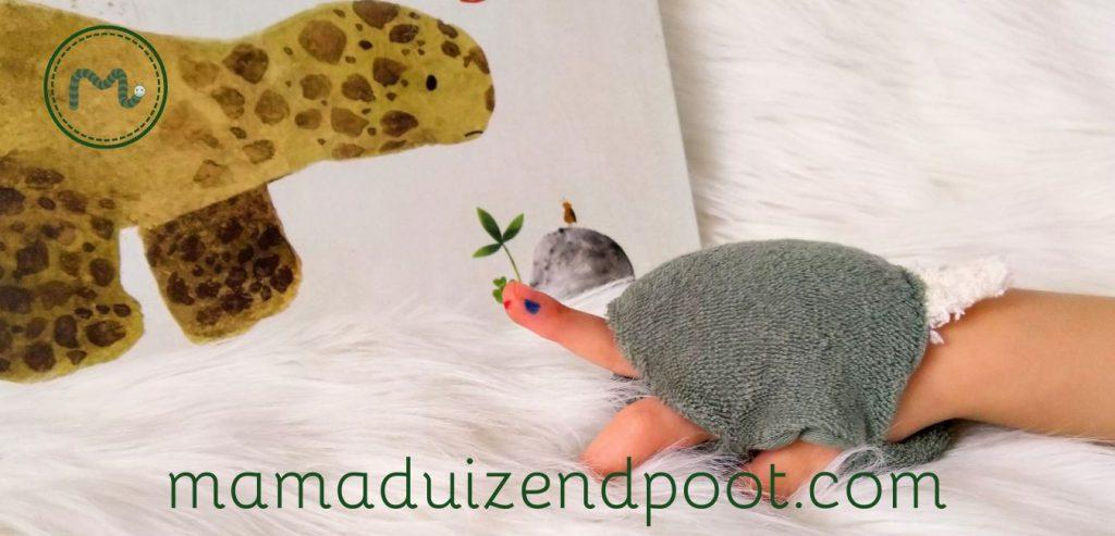 Een schildpad van een hand