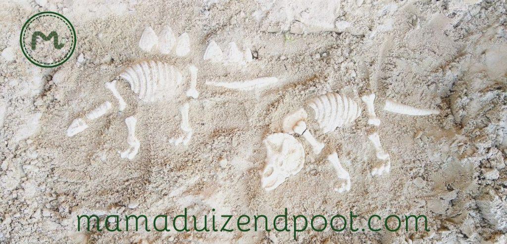 Dinofossiel van gips