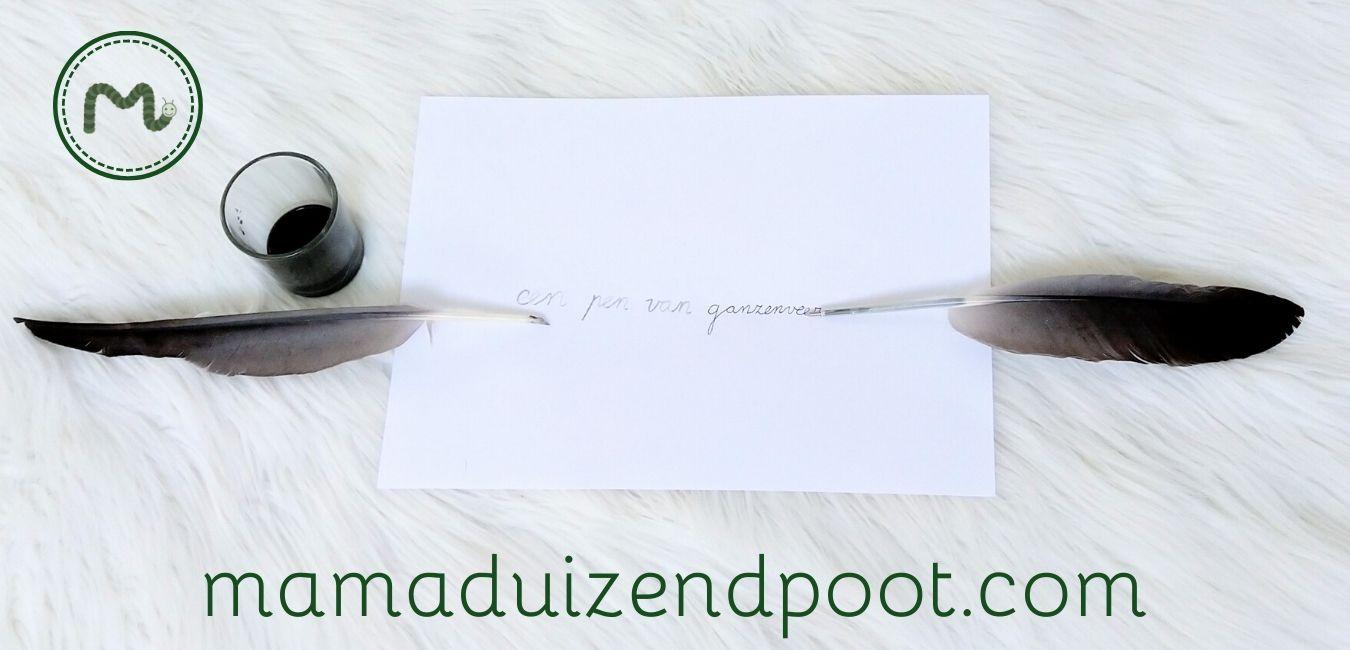 een pen van een ganzenveer