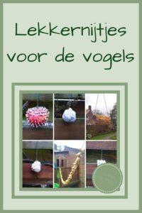 Pinterest - Lekkernijtjes voor de vogels