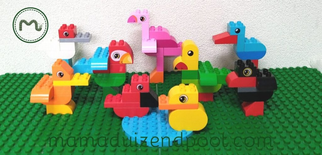 Vogels bouwen met Duplo